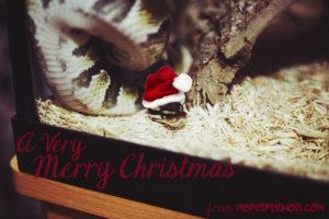 ball-python-christmas-santa-hat