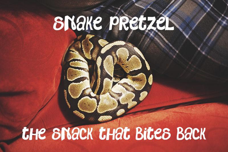 ball python snake pretzel internet meme